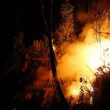 Miško gaisras Baltarusijoje nebeartėja Lietuvos link