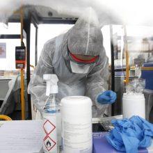 I. Šimonytė apie galimybių pasą: Vyriausybė tikrai aprūpins savivaldybes antigenų testais