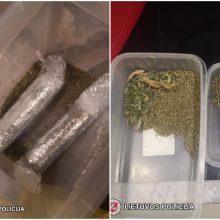 Smūgis narkotikų pardavėjams: pareigūnams įkliuvo platindami kanapes