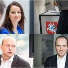 Verslo ir profsąjungų atstovų komentarai apie Seimo rinkimus: svarbiausios citatos