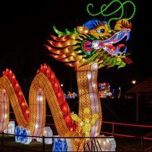 Naujų metų sėkmei – šokis su drakonu: apsilankyti kviečiami visi
