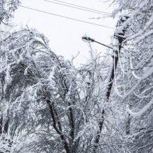 Lietuvoje be elektros dar yra apie 250 namų ūkių