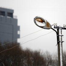 Estijoje per audrą be elektros liko per 3,5 tūkst. būstų
