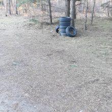 Kairių miške – sąvartynas: teršėjai krauna padangų bokštus, palieka šiukšles