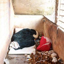 Benamiai Klaipėdoje užplūdo nakvynės namus