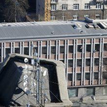 Klaipėdos centre – vanago klyksmai: gyventojams tenka kęsti paukščių skleidžiamą triukšmą