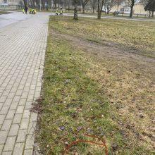 Klaipėdiečiai pašiurpę: kelyje į pradinę mokyklą mėtosi švirkštai