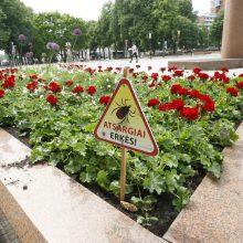 Specialistai skambina pavojaus varpais: klaipėdiečių tyko erkės