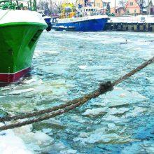 Žuvininkystėje planuoja esminius pokyčius: kokių pakeitimų sulauks žvejai?