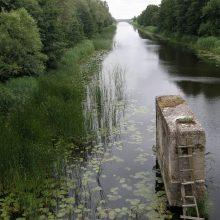 Karaliaus Vilhelmo kanalui žadamas dėmesys