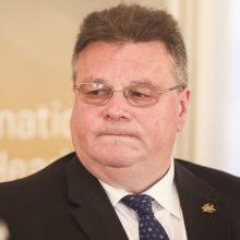 L. Linkevičius: ES šalys turėtų imtis atsakomybės stiprinant saugumą su NATO