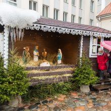 Kalėdinės prakartėlės lankytojus pasitinka ir penkių dienų ėriukas