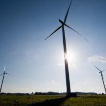 Vėjo jėgaines žadėjusios statyti įmonės turės atlyginti 304 tūkst. eurų žalą