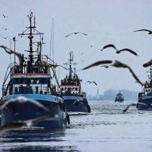 Žvejų Baltijos jūroje vėl laukia badas