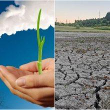 Tarsi prie bedugnės krašto: šalyje dažnės sausros, nyks augalų rūšys, brangs statybos