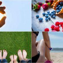 Penkios vasaros naudos, kurias dar spėsite pasiimti rudeniui