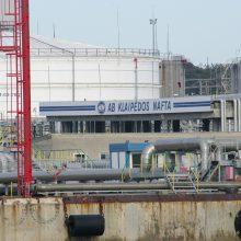 """Seime po """"Grigeo"""" skandalo – kritikos lietus ir dėl uosto taršos"""