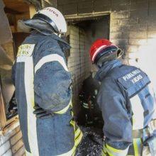 Klaipėdos rajone siautėja padegėjas: tyčia sukėlė du gaisrus