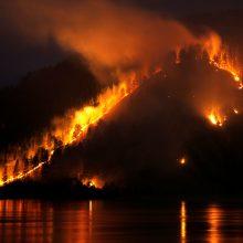 Ekspertai: didžiuliai Sibiro miškų gaisrai gali sukelti ekologinę katastrofą