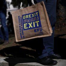 """D. Britanija Europos Sąjungai turi pasiūlymų dėl """"Brexit"""""""