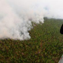 Mokslininkams nerimą kelia Sibire liepsnojantys gaisrai