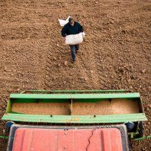Žemės ūkio ministras: įsileidus visus norinčius, nebeliktų karantino prasmės