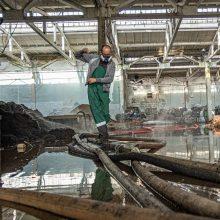"""""""Dzūkijos vandenims"""" už taršą gesinant gaisrą Alytuje – 780 tūkst. eurų bauda?"""