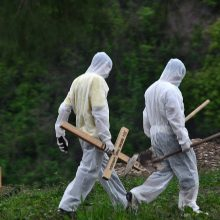JAV per parą nuo COVID-19 mirė beveik 700 žmonių