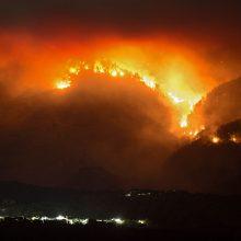 Ispanijoje su miško gaisru kovojantiems ugniagesiams į pagalbą pasiųsti kariai