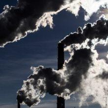 Aplinkos ministras: Lietuvai būtų sunku sparčiau mažinti anglies dioksido išmetimą