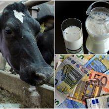 Pieno supirkimas: stambieji pieno ūkiai gauna europinę kainą
