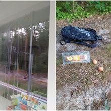 Piktinasi įžūlių paauglių linksmybėmis: į gyventojų langus tyška kiaušiniai