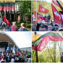 """""""Didysis šeimos gynimo maršas"""": dalyviai išreiškė susirūpinimą dėl tradicinių vertybių likimo"""