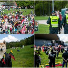 """Vilnius šurmuliuoja: į Vingio parką sugužėjo """"Didžiojo šeimos gynimo maršo"""" dalyviai"""