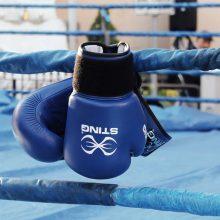 Pandemija nesustabdė – A. Šociko bokso turnyras vyks 24 metus iš eilės