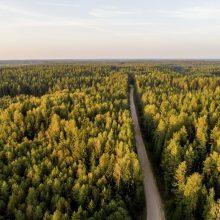 Už svarias pastangas išsaugoti ir atkurti gamtinę aplinką – 5 tūkst. eurų premija