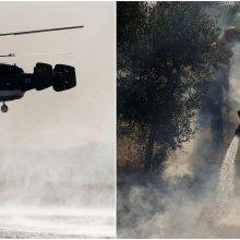 Miško gaisras Madrido regione nevaldomai siaučia ketvirtą dieną iš eilės