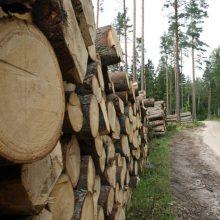 Valstybinių miškų urėdija: medienos kaina didėjo 20 proc.