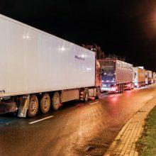 Lietuva ir kitos Europos šalys svarsto skųsti ES teismui vežėjų veiklos griežtinimą