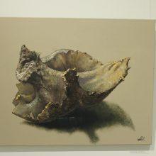 A. Liorančaitės-Žukauskienės tapybos paroda: žmogaus paieškos gamtos lobynuose