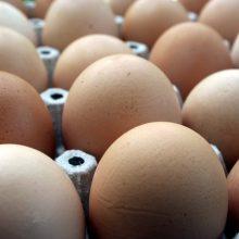 Lietuvos įmonės kiaušinių produktus galės eksportuoti ir į Naująją Zelandiją