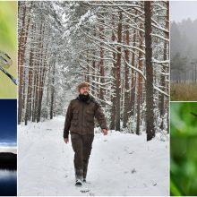 M. Ilčiukas: džiaugiuosi kiekviena diena miške
