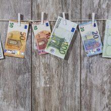 Vyriausybė pasiskolino 50 mln. eurų