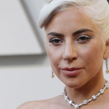 Dainininkė Lady Gaga už pavogtų savo šunų sugrąžinimą siūlo 500 tūkst. dolerių atlygį