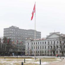 Vilniaus savivaldybė pristatys Lukiškių aikštės naudojimo ir tvarkymo priemonių planą