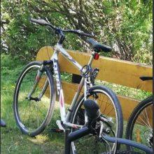 Alytuje pavogtas dviratis – policija prašo pagalbos