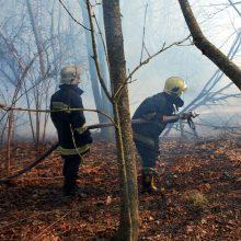 Ukrainoje sudužus lengvajam lėktuvui žuvo du žmonės