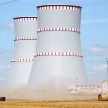 VATESI ragina sustabdyti Astravo AE įjungimą, kol ji nebus visiškai saugi