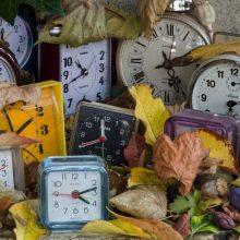 Ekonomistas: laiko persukimas yra politinis klausimas