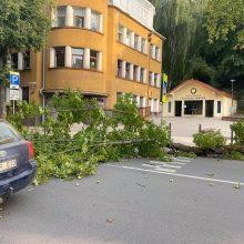 Ankstų rytą V. Putvinskio gatvėje vairuotojus pasitiko netikėta kliūtis